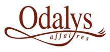 Hôtel-Odalys-affaires